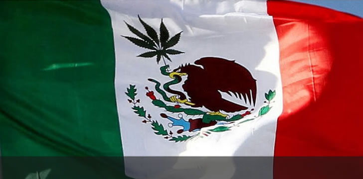 Mexican Supreme Court Rules Prohibition of Cannabis Unconstitutional